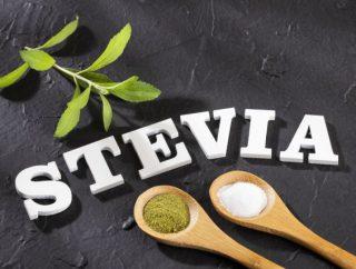 Stevia – właściwości i zastosowanie